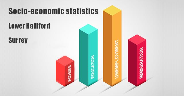 Socio-economic statistics for Lower Halliford, Surrey